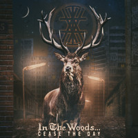 In The Woods... - Cease the Day