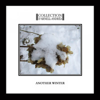Collection D'Arnell-Andrea - Another Winter