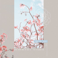 Shawn Mendes - The Album (Remixes)