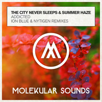 The City Never Sleeps & Summer Haze - Addicted (The Remixes)