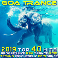 Various Artists - Goa Trance 2019 - Top 40 Hits Best of Progressive PsyTrance Acid Techno Psychedelic EDM Dance