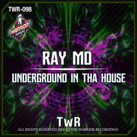 Ray MD - UNDERGROUND IN THA HOUSE
