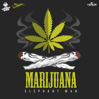 Elephant Man - Marijuana - Single