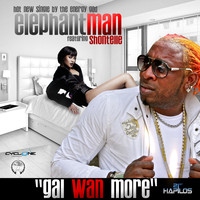 Elephant Man - Gal Wan More - Single
