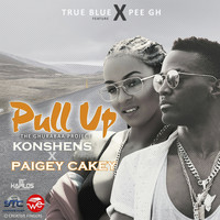Paigey cakey - Pull Up