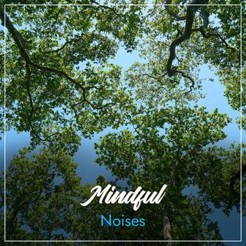 Musica Relajante, Pure Massage Music, Radio Meditation Music