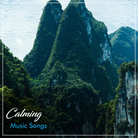 Asian Zen: Spa Music Meditation, Healing Yoga Meditation Music Consort, Zen Meditate - #17 Calming Music Songs for Asian Spa, Meditation & Yoga