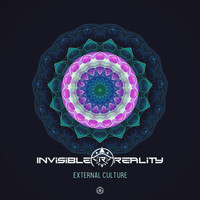 Invisible Reality - External Culture