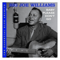 Big Joe Williams - Baby Please Don't Go