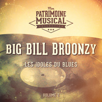 Big Bill Broonzy - Les Idoles Du Blues: Big Bill Broonzy, Vol. 2