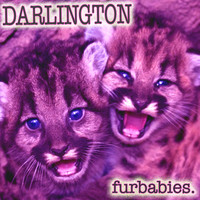 Darlington - Furbabies