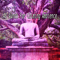 Healing Yoga Meditation Music Consort - 42 Auras For Calming Ambience