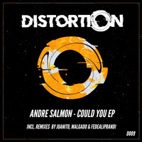 Andre Salmon - Could You EP