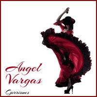 Angel Vargas - Gorriones