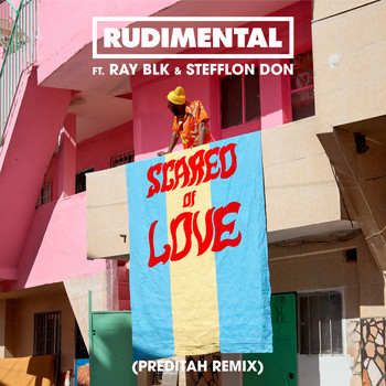 Rudimental - Scared of Love (feat. RAY BLK & Stefflon Don) (Preditah Remix)