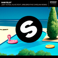 Sam Feldt - Just To Feel Alive (feat. JRM) (Breathe Carolina Remix)