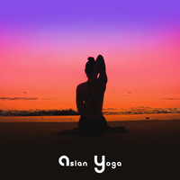 Healing Yoga Meditation Music Consort - Asian Yoga: Music for Practice Zen
