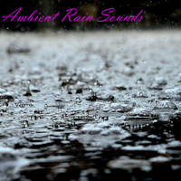 Switch - Ambient Rain Sounds