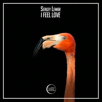 Sergey Lemar - I Feel Love