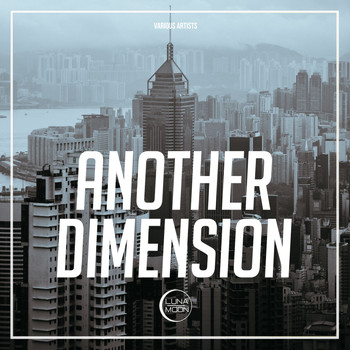 Various Artists - Another Dimension