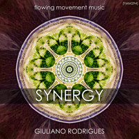 Giuliano Rodrigues - Synergy