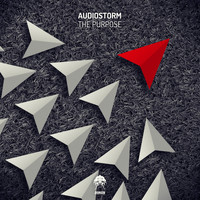 AudioStorm - The Purpose