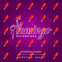 Norman Doray - Somethin' About