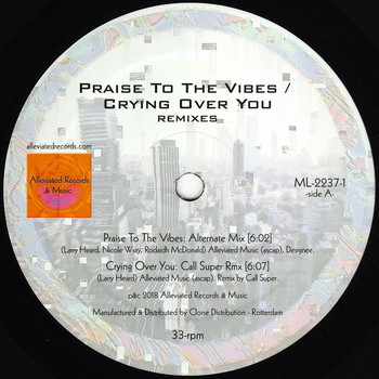 Mr. Fingers - Praise to the Vibes / Crying Over You (Remixes)