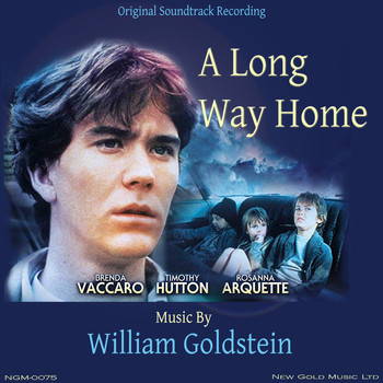 William Goldstein - A Long Way Home