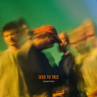 Seed to Tree - Lack of Proportion