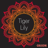 Orion - Tiger Lily