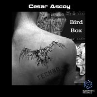 Cesar Ascoy - Bird Box