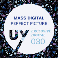 Mass Digital - Perfect Picture EP