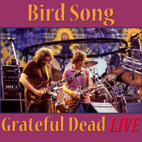 Grateful Dead - Bird Song (Live)