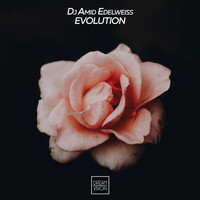 DJ Amid Edelweiss - Evolution