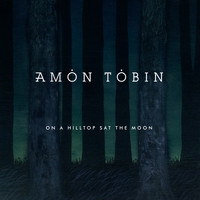 Amon Tobin - On a Hilltop Sat the Moon