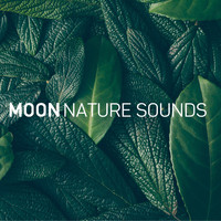 Moon Tunes and Moon Nature Sounds - Deep Sleep (8D Audio)