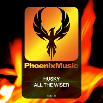 Husky - All The Wiser