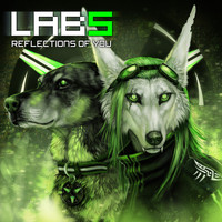 Laboratory 5 - Reflections Of You