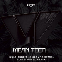 Mean Teeth - Multitude / Blaze (Remixes)