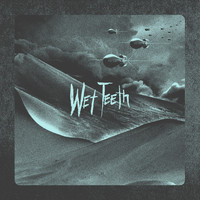 Wet Teeth - This Message Will Self-Destruct