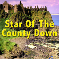 The Irish Boys - Star Of The County Down