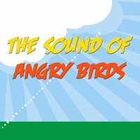 Birds - The Sound Of Angry Birds