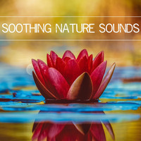 Nature Sounds - Soothing Nature Sounds
