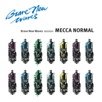 Mecca Normal - Brave New Waves Session