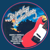 Brinsley Schwarz - Live in Sheffield (Live)