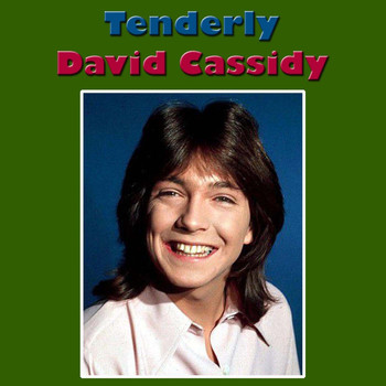 David Cassidy - Tenderly (Live)