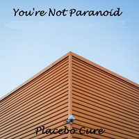Placebo Cure - You're Not Paranoid