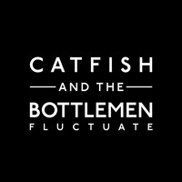 Catfish and the Bottlemen - Fluctuate