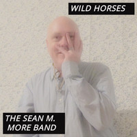 The Sean M. More Band - Wild Horses